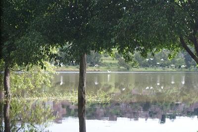 Las coladeras son insuficientes para captar el agua en varias calles y colonias.