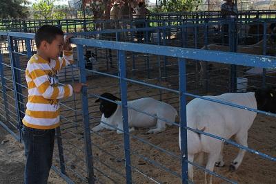 En la expo habra expositores de insumos, maquinaria, agroquímicos y ganado