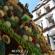 La caravana turística de Salvatierra estará presente en Celaya