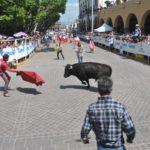 Resultando lesionado un solo participante de nombre José Álvarez, de 33 años de edad, originario de San Miguel de Allende, mismo que solamente fue empujado por un toro ocasionándole golpes en el tórax y extremidades , con posible ruptura de meñique pie izquierdo.
