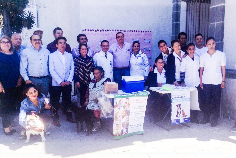 En total entre los municipios que abarcan esta demarcación como son Acámbaro, Coroneo, Jerécuaro, Salvatierra, Tarandacuao y Santiago Maravatío existen disponibles 156 mil 199 dosis, en 37 puestos de vacunación y 53 brigadas.