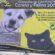 Realizaran campaña de esterilización canina y felina